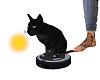 LC Vacuum Riding Cat