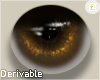 £. Derivable Eyes