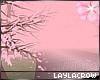 ☽ Cherry Blossom