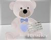H. Teddy Bear Gift Boy
