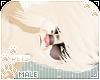 [Pets] Fudge | Emo