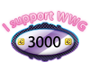 [wwg] support 3000