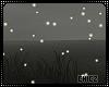 Cz!!Fireflies