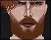 R. Beard Mesh Ginger
