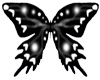 BUTTERFLIE BLACK Eukomuv