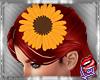 [LD]SunflowercHairpin