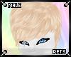 P | Star | hair v3