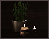 Candles/Deco