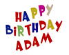 ADAM BIRTHDAY BALLOONS