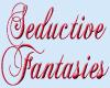 Seductive Fantasies word