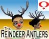 Reindeer Antlers -Womens