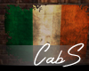 Torn Ireland Flag