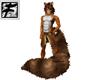 ~F~ Tabby Fuzzy Tail