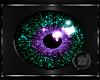 ~BB~ Star Teal/Purple