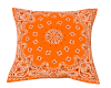 Naranja Pillow