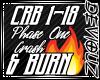 !DS! Crash and Burn