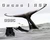 Orcas   ASH