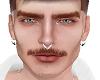 vk. asteri brows/beard