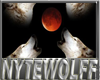 `NW Nyte's Baby Brewing