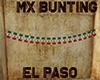 [M] EL PASO MX Bunting