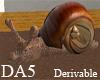 (A) Sea Snail Chair