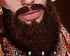 Asteri Red Beard
