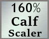 Scale Calf Calve 160% MA