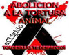 [VP]AGAINST ANIMAL ABUSE
