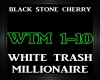 Black Stone Cherry~WTM
