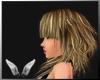 [Sc] Hisae Blonde Dark