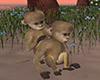 wedding island monkeys