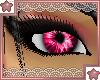 e` Pink iFlutter