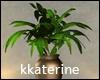 [kk] Loft Vase Plant