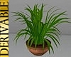 3N: DERIV: Plant 30