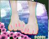 🌺Clover Paws 1🌺
