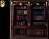 [Nostalgia] Bookcase