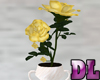 DL: Yellow Roses Potted