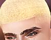 Blonde Faded Cut