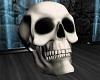 ATS~ Bone Skull