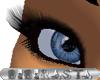 BBR Short Eyelashes