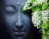 The Buddah