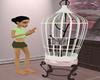 orient bird cage