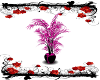 Pink and Black Plant