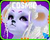 [C]Ammerst Skin