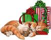 Cat n Mouse Sleeping