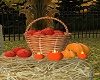 Autumn Fruit Basket
