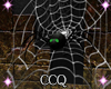 [CCQ]HC:Animated Spider