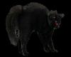 V 3D Black Wall Cat