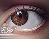 B! Eyes - Cocoa. R