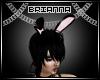 -B- PVC Bunny Ears